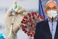 Britská mutace koronaviru se Českem šíří od prosince a pronikla nejméně do šesti krajů