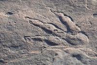 Holčička (4) našla v kameni stopu starou 215 milionů let: Pomůže objasnit tajemství dinosaurů?