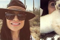 Žena cestuje po světě skoro zdarma: Vydělává hlídáním kočiček!