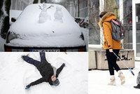 """Evropu zasypal sníh: """"Katastrofa"""" na německých dálnicích, sněhová bouře v Nizozemsku"""