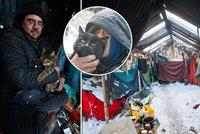 Areál v Dejvicích, kde bydlí bezdomovci s kočkami, čeká demolice. Kdy a co s nimi bude?