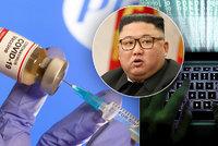 Kimovi hackeři chtěli ukrást technologii k vakcíně Pfizer. Zuří epidemie i v KLDR?