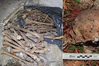 Šokující nález 11 lebek u Písku: O kus dál se válely pytle plné lidských kostí!