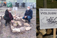 Vydloubni a zasaď! Jiří v Komořanech ze zbytků opuky vytvořil sousedskou skalničkovou banku