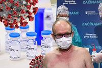 "Slovensko dostává ""béčkový"" Sputnik V? Lékový ústav ruskou vakcínu stále neschválil"