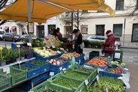 """""""Je to bída."""" V Praze otevřelo několik farmářských tržišť, zákazníky odradilo počasí"""