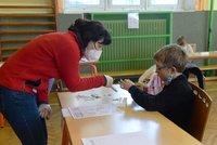 Školy na Děčínsku otevřou 19. dubna, schválili hygienici. Další brazilskou mutaci neobjevili