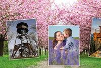 Tipy na romantické výlety: Polibek na 1. máje? Pod mandloní, sakurou nebo v levandulovém poli