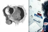 Měsíčním kráterům jasně dominují muži. Umělkyně začala zkoumat jména a nestačila se divit