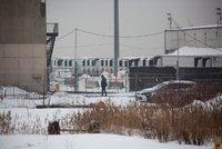 Oběti covidu v New Yorku dál skladují chladírenské kamiony. Skončí v hromadném hrobě?