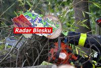 S letními teplotami přijde do Česka vichřice. Může lámat větve i stromy, sledujte radar Blesku