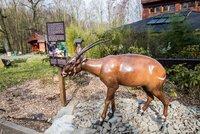 Zoo Ostrava překvapila: Modely v nadživotní velikosti, kostry i sošky vyrobili zaměstnanci