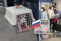Poslední várka Rusů z ambasády odletěla z Prahy. Do Moskvy míří i děti, psi a hlodavec