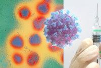 Zájem o očkování proti chřipce kvůli covidu klesne, bojí se lékaři. Experti: Hrozí křížení nemocí