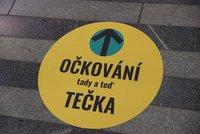 Usnadnění života Čechů po covidu: Aplikace Tečka frčí. Dzurilla věří v rozkvět Portálu občana