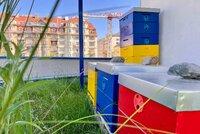 Včelí úly, hmyzí hotely, luční kvítí tam, kde by to Pražané nečekali: Střechy pražských vodojemů ožívají