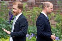 Harry si v šokující knize smlsne i na Williamovi! Ohrozí vládu staršího bráchy?