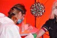 """Protilátky k bezinfekčnosti nestačí, jsou experti neoblomní. """"U chřipky je taky neměříme"""""""