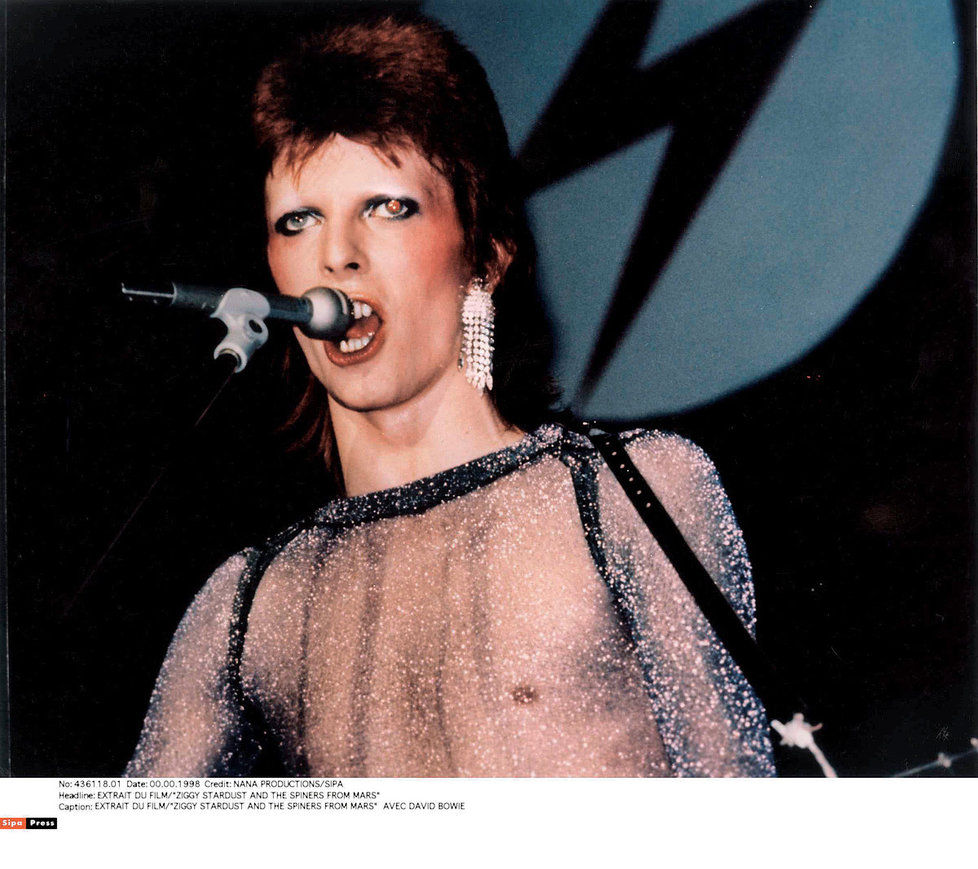 Postavu rockové superstar Ziggyho Stardusta vymyslel David Bowie  na album The Rise and Fall  of Ziggy Stardust  and the Spiders from Mars