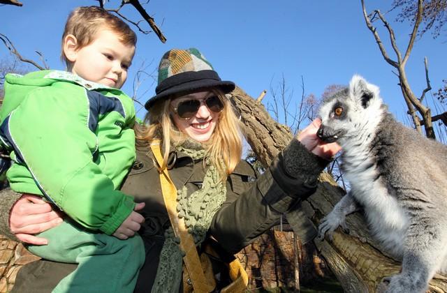 Aneta Krejčíková (Gabriela Pumrová) se svým synovcem narazila na agresivního lemura, v ruce jí zůstal jeho zub!