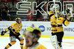 Litvínovská euforie začíná! Brankář Francouz po závěrečném hvizdu odhazuje hokejku