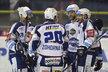 Hokejisté Komety Brno se radují z branky Martina Dočekala v utkání proti Litvínovu