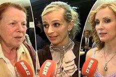 Jaké mají tyto dámy vztah k vínu a alkoholu?