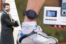 Pelikána sledovali: Na noze měl připoutaný náramek s GPS