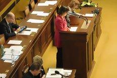 Kalouskova poslankyně kritizovala ve Sněmovně pamlskovou vyhlášku