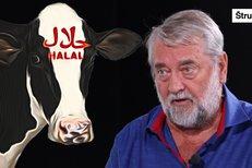Nemuslimské dětí musí jíst halal a rodiče o tom ani neví, islám má privilegia, říká Kuras