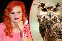 Speciální ptačí horoskop: Jste orel, kachna, vrána...? Najděte se!