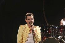 Problémy kolem muzikálu Freddie: Brzobohatého divadlo v maléru!
