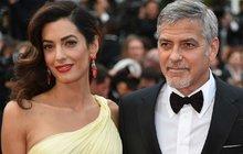 Žádná velká romantika, jak by se dalo u borce jeho kalibru očekávat. George Clooney (56) se s manželkou Amal (39) poznal u sebe doma, kam ji přivedl jeden jeho kamarád.