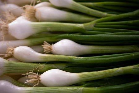 Jarní cibulka je bohataná n avitamíny, minerály a kyselinu listovou.