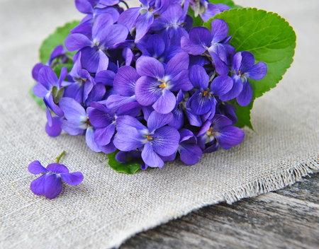 Květy fialek v cukru krásně ozdobí dorty nebo zákusky.