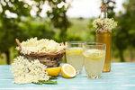 Bezinky kvetou! Připravte z nich domácí sirup nebo šampaňské!