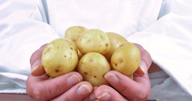 Plesnivé brambory jsou pro zdraví nebezpečnější, než zelené