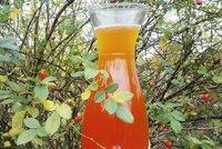 Zdraví v lahvi: Připravte si domácí šípkový sirup