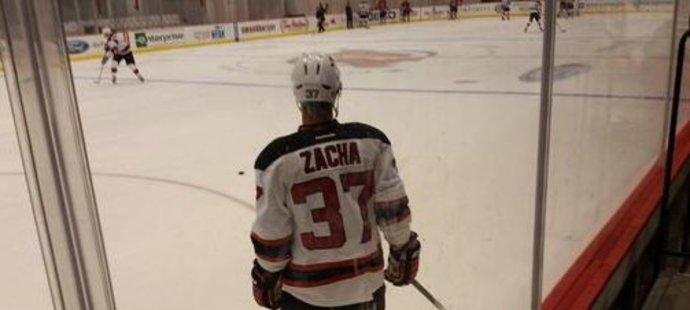 Pro kemp vyfasoval Zacha číslo 37.