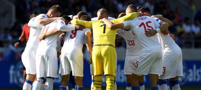 Čeští reprezentanti před zápasem s Slovenskem