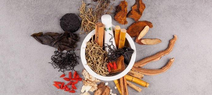 Lezec Adam Ondra se stravuje podle principů tradiční čínské medicíny