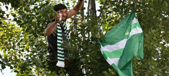 """Zřejmě nejoriginálnější """"sedačku"""" si pro duel s Teplicemi našel fanoušek Bohemians, který hnízdil na stromě"""