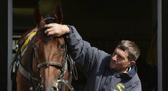 Majitel Mladé Boleslavi má dva koně v derby, trénuje je Váňa
