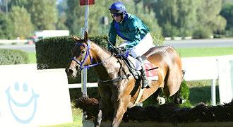 Proběhl cílem a skolil jej infarkt, Váňův kůň Taro zemřel na dráze
