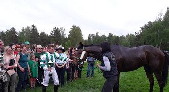 To bylo jak na Velké! Jak vypadá vítězný den dostihového koně?