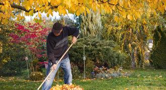 Podzimní restart pro trávník: Chce to provzdušnit a pohnojit