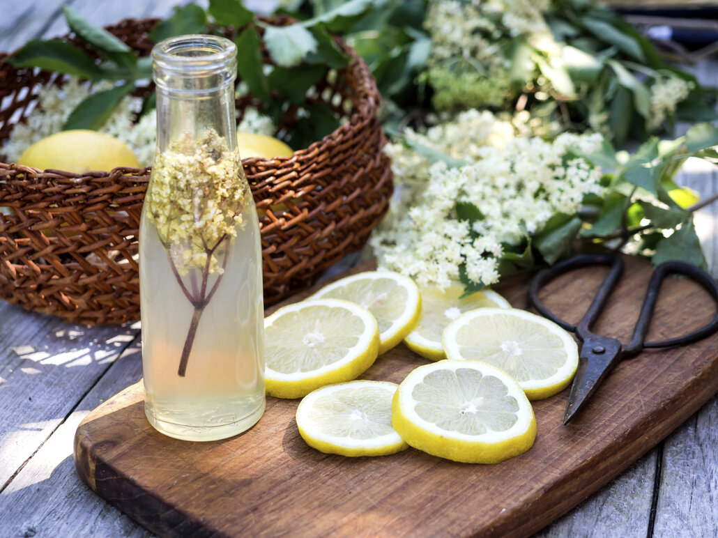 Sirup z bezových květů nařeďte vodou a podávejte jako limonádu