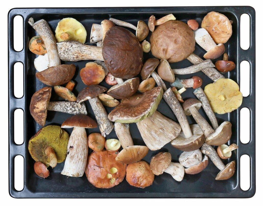 Pokud se rozhodnete pro sušení v troubě, naskládejte nakrájené houby na plechy vyložené pečicím papírem, aby se nepřilepily