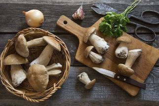 Houby a recepty z nich: Smaženice, polévka i čalamáda