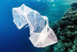 Plasty znečišťují oceány. Je ale řešením zákaz výroby?